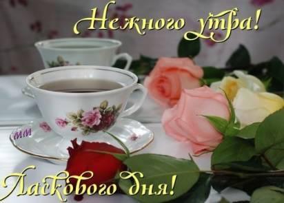 картинки с добрым утром и хорошего дня картинки